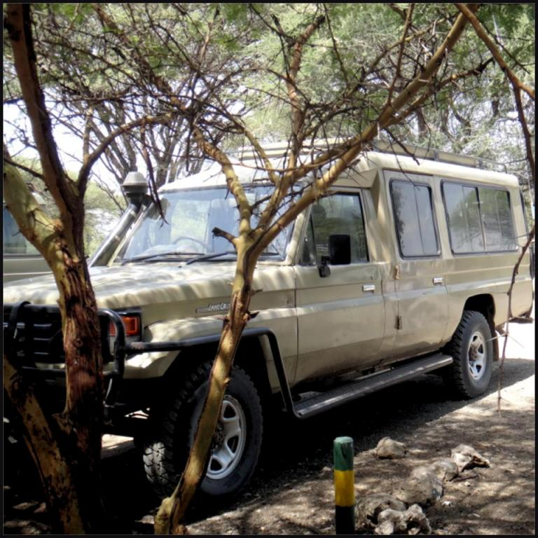 Tarangire pc14 vehicle tourists.jpg